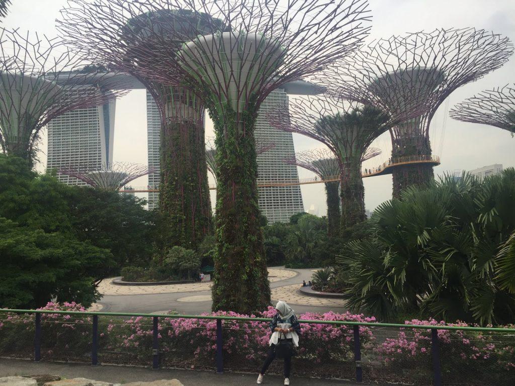 rekomendasi wisata singapore
