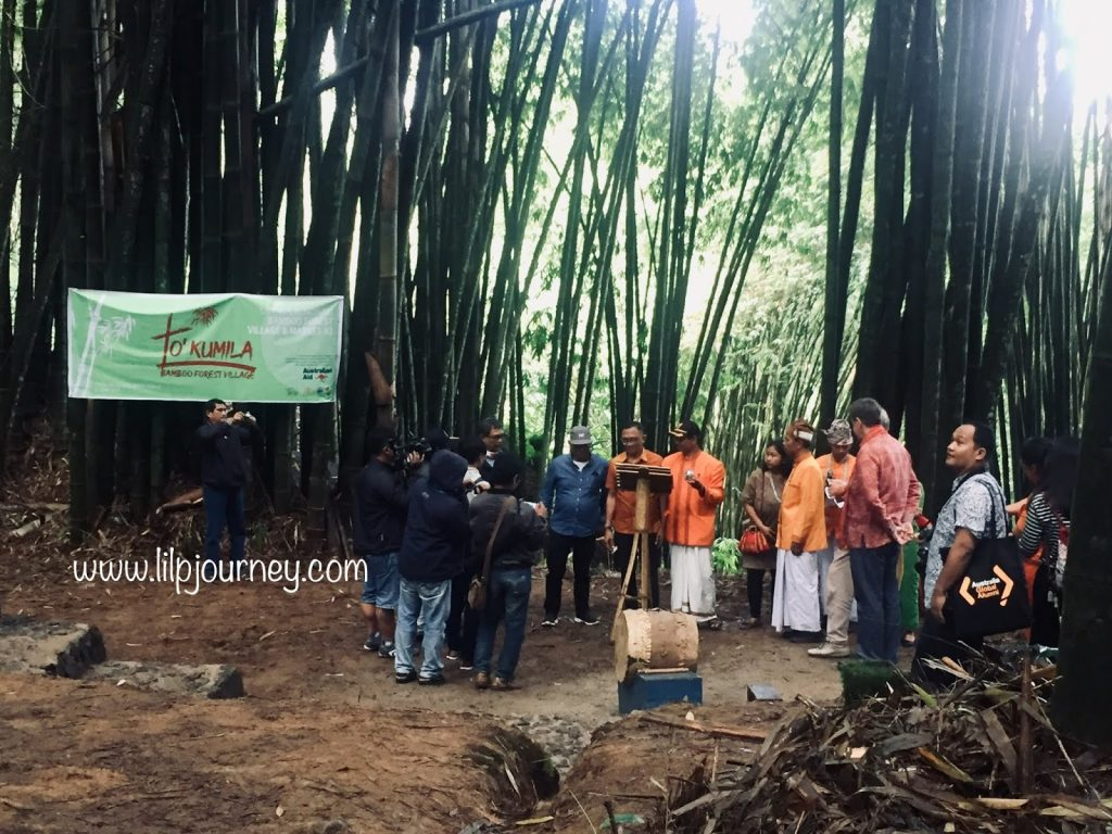 grand launching pasar hutan bambu toraja