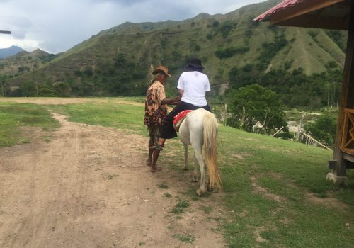 naik kuda di ollon
