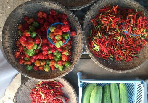 pasar tradisional toraja